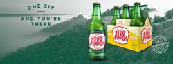 Ale-8-One: ONE SIP AND YOU'RE THERE